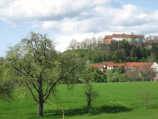 Stadt Niedernhall