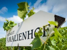 Weingut Amalienhof Heilbronn