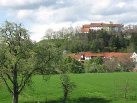 Burganlage Tannenburg bei Bühlertann