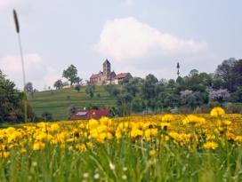 Blick auf den Hohenberg mit Jakobskirche