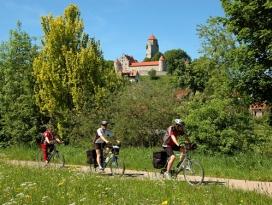 Marienburg Niederalfingen