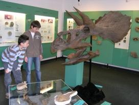 Urweltmuseum Aalen