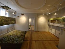 Erlebnis Mittleres Jagsttal, Ausstellung, Mulfingen